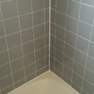 Sir Grout Phoenix Clean and ColorSeal Shower