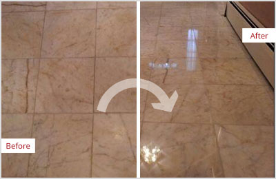 Sir Grout Phoenix Tan Marble Hone and Polish