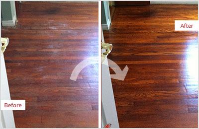 Sir Grout Phoenix Deep Wood Cleaning